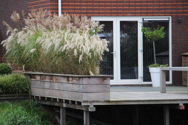 ontwerp-en-aanleg-tuin-Harinxmaland-Sneek-1.1